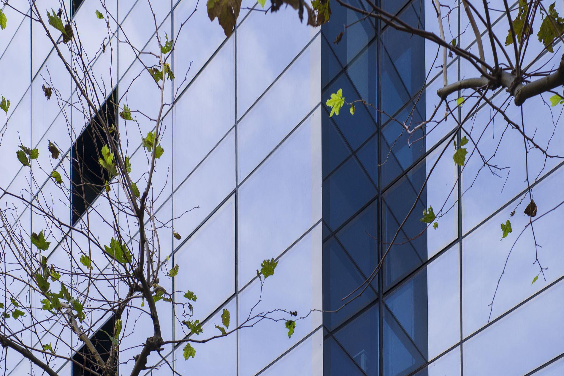 Fiark-Rehabilitación-de-fachada-en-Avenida-25-11